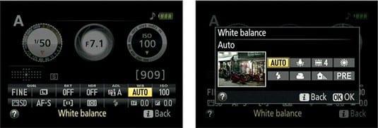 white-balance-adjustment-nikon-d5300
