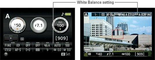 white-balance-fine-tune-nikon-d5300