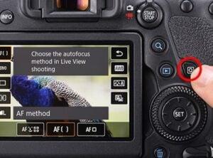 Canon 6D Mark II wedding photography - autofocus specs
