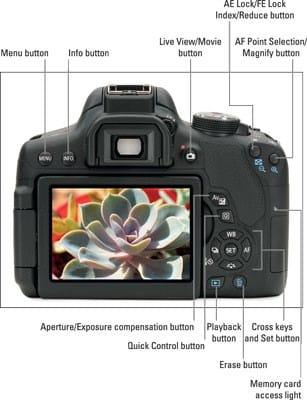 Canon EOS T6i portrait settings - aperture