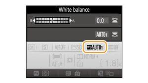 Nikon D7200 portrait settings - white balance