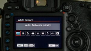 Canon M50 cinematic settings - ISO
