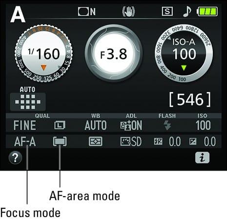 Nikon D3500 shutter speed - general shoot