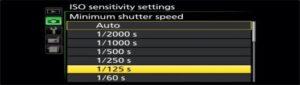 Nikon D3500 shutter speed - high