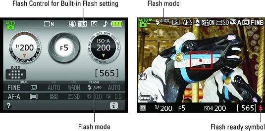 Nikon D3500 shutter speed - portrait