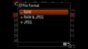 Sony a9 wildlife photography - raw mode