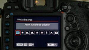 canon 90D portrait settings - white balance