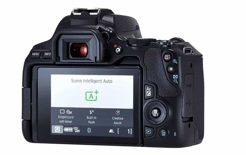 Canon SL3 Review, Specs and Price - LCD monitor