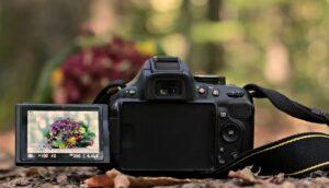 Nikon Z6 review - LCD Monitor