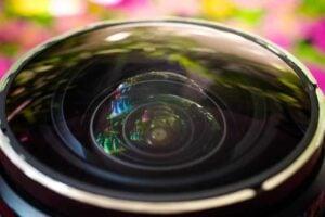 What is Fisheye Lens - different types of fisheye lenses