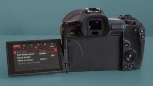 Canon EOS R wildlife photography EVF settings