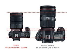 Canon EOS R wildlife photography settings