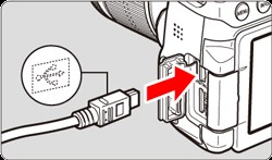 How to connect Canon rebel t6 to computer - plug the cable