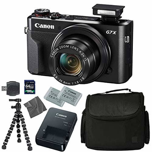Canon G7X Powershot Camera with a Flip Screen