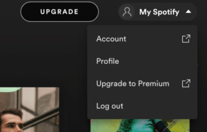 How To Connect Spotify To Alexa? - Account Overview Page