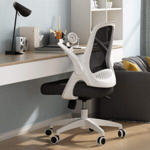 Virtual Classroom Equipment - Hbada Office Task Desk Chair