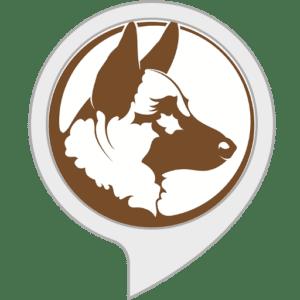 25 Best Alexa Skills of 2021 - Gaurd Dog